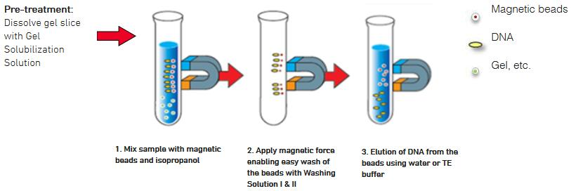 Simple and Efficient Extraction Procedure